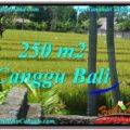 Beautiful Canggu Pererenan BALI LAND FOR SALE TJCG207