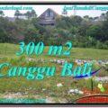 Affordable 300 m2 LAND SALE IN CANGGU TJCG205