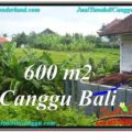 Affordable 600 m2 LAND SALE IN CANGGU TJCG206