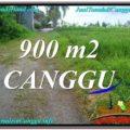 FOR SALE Magnificent LAND IN Canggu Batu Bolong TJCG215