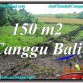 Affordable PROPERTY LAND IN Canggu Pererenan BALI FOR SALE TJCG213
